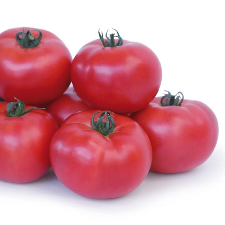 Pomidor szklarnia/tunel MALINOWY TAKADO F1