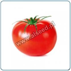 Pomidor ALCESTE F1