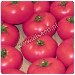 Pomidor malinowy MAL280F1 ok. 280g